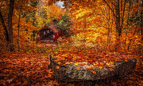 autumn_scenery_in_norway