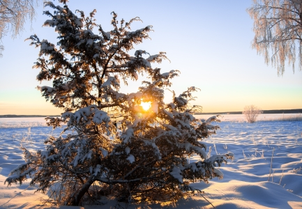 Experience a Wintertime Wonderland in Swedish Lapland